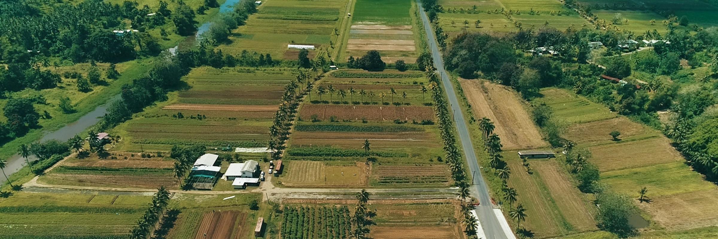 Koronivia Farm